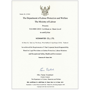 TLS 8001-2010 Certificate at Basic Level